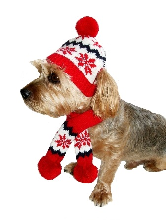 Snowflake Dog Hat & Scarf