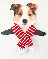 Red Striped Holiday Scarf